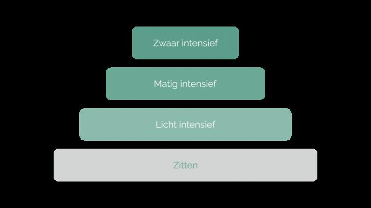 Bewegingspiramide niveaus